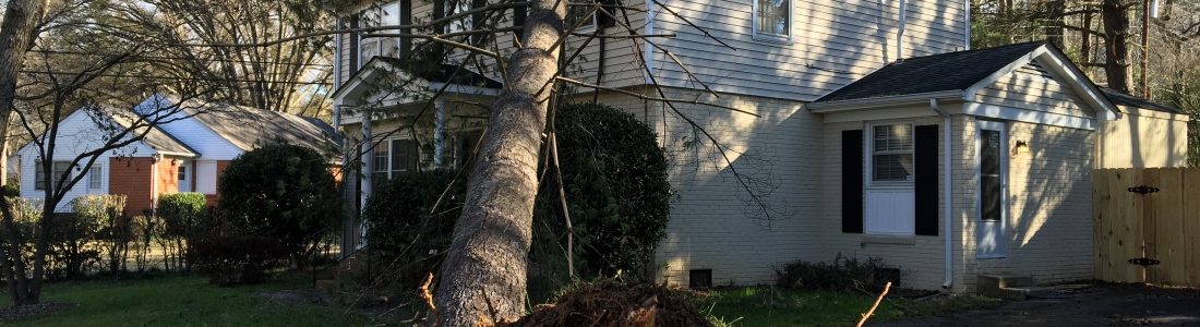 Wind and Tree Damage to Charlotte, NC homes